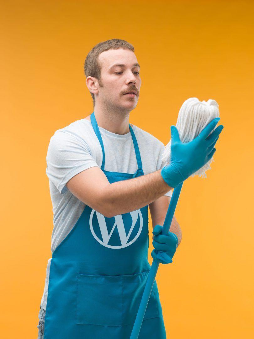 WordPress Spring Cleaning