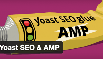 Glue for Yoast SEO & AMP Plugin
