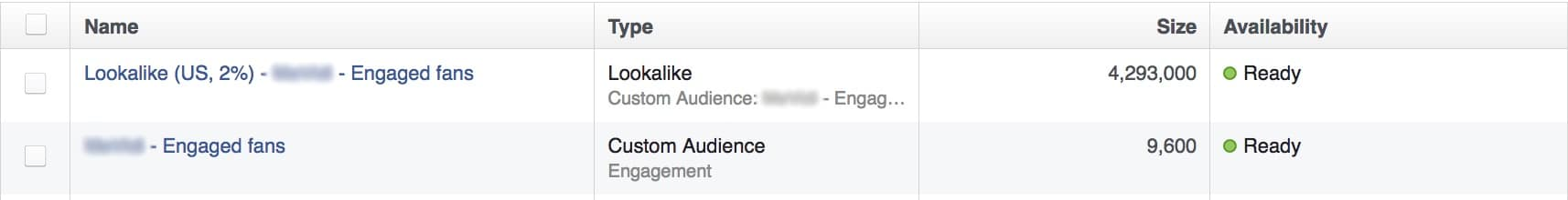 engagers and lookalike audiences